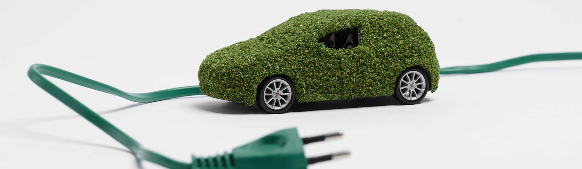 Going Green Electric Vehicles Photo